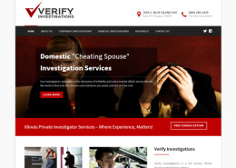 Verify Investigations