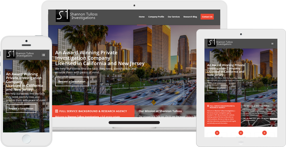 Private Investigator Website Design Responsive