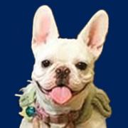 Winnie Roel Puppy Shot